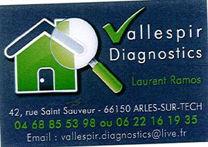 VALLESPIR DIAGNOSTICS